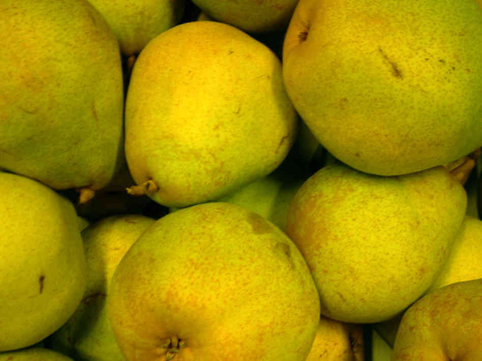 Kinds Of Pears